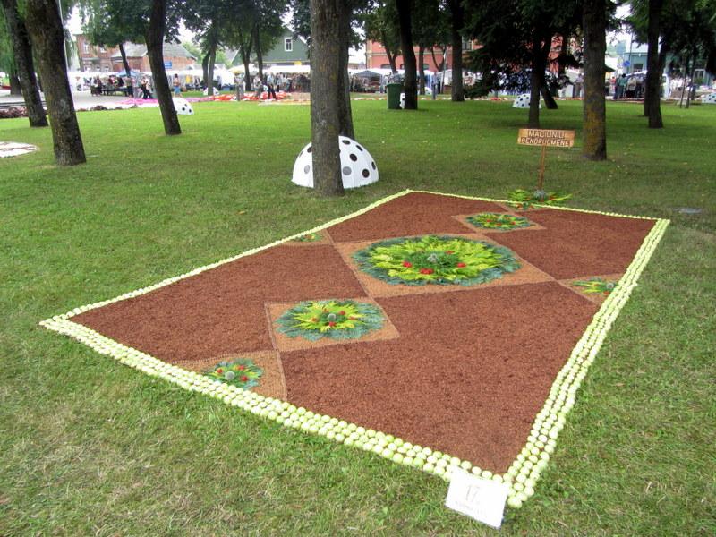 Mačionių kaimo bendruomenės kilimas.