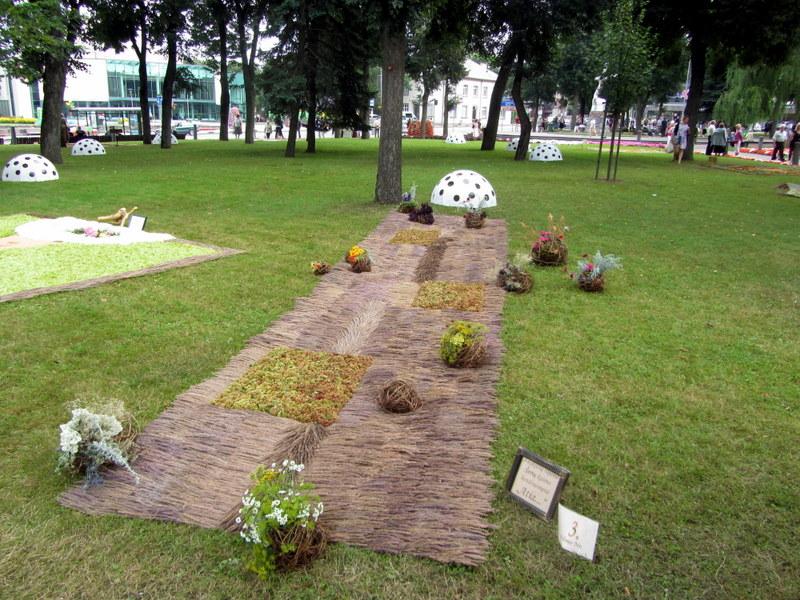 Šerių kaimo bendruomenės floristinis kilimas.
