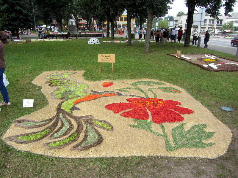 """Piktagalio kaimo bendruomenės """"kolibris"""" pelnė penktąją vietą ir žiūrovų simpatijų prizą."""