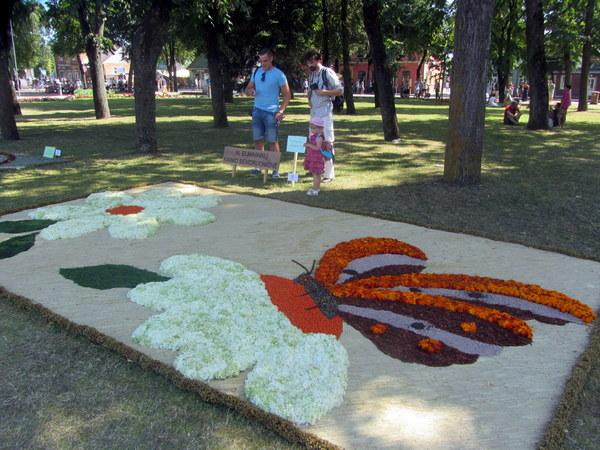 Žiūrovų simpatijų prizą pelnė Naujųjų Elmininkų bendruomenės floristinis kilimas su drugeliu,