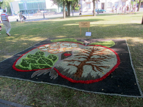 """Konkurso senbuvė Piktagalio kaimo bendruomenė supynė """"rojaus kerų"""" kilimą."""