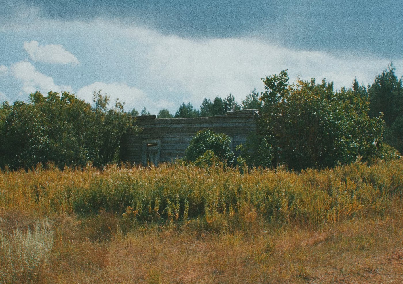 Sodyba Ramuldavos girioje. Giedriaus Alkausko nuotrauka