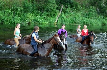 Žirgų maudynės Šventojoje.