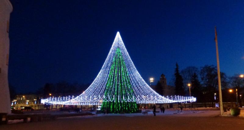 Žavioji žalioji Vilniaus eglė Katedros aikštėje. Janinos Baublienės nuotrauka.